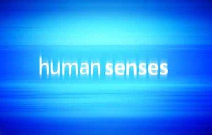 Смотреть шоу Чувства человека онлайн